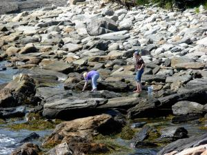 Photo of two girls looking into tide pools at Pemaquid Point.